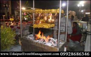weddingdecoration-Fireworks-Invites-LiveSingers-Performers-Photography-Video-Udaipur-Rajasthan